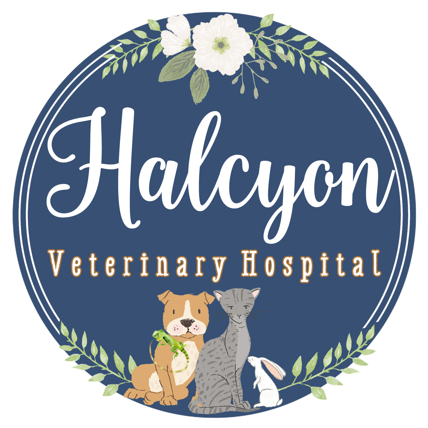 Halcyon Veterinary Hospital